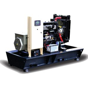 Generator TMGR-175 175 kVA RICARDO